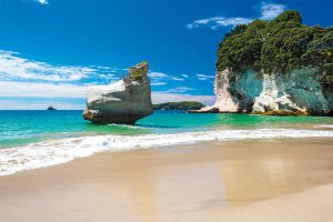 Nuova Zelanda, anno scolastico, trimestre o semestre all'estero