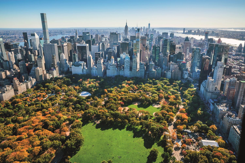 New York Rider & Washington Experience