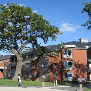 university-of-surrey-2